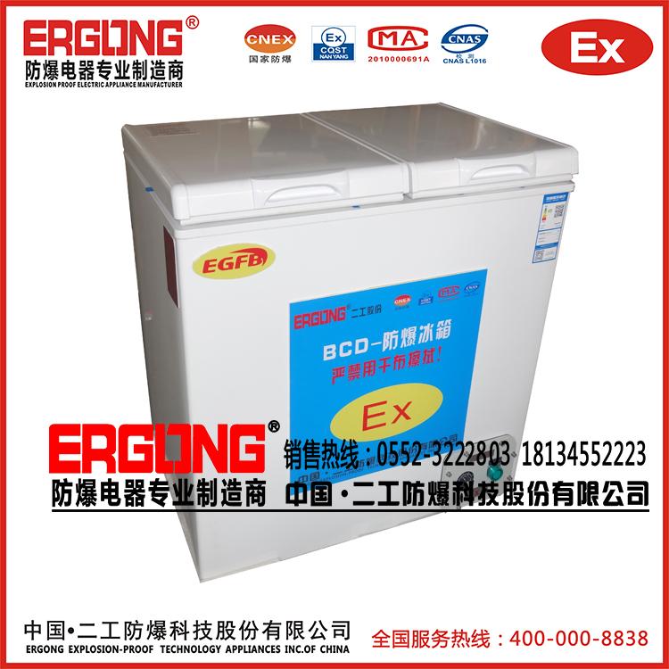 300升防爆冷栋型小冰柜